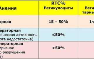 Подсчет ретикулоцитов в мазке крови