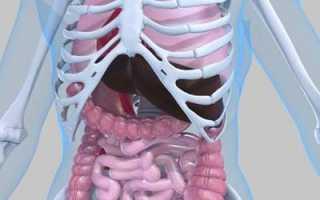 Магнитно-резонансная томография брюшной полости