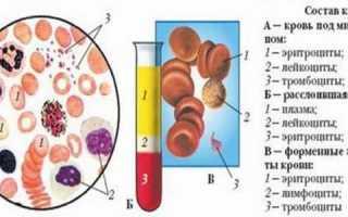 Особенности оак из вены и из пальца
