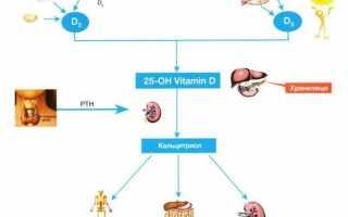 Нехватка витамина д у взрослых — симптомы дефицита и его лечение