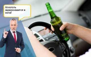 Сколько времени держится алкоголь в моче и как он влияет на анализы