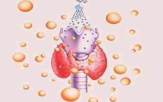 Сущность и нормы анализа крови на тиреотропный гормон (ттг)