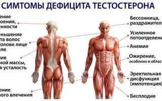 Сдача анализа на тестостерон у мужчин: подготовка, проведение, норма
