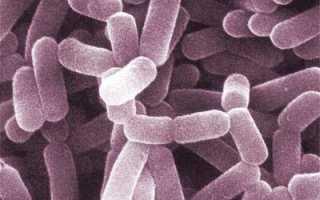 Как восстановить микрофлору влагалища: причины нарушения и принципы коррекции