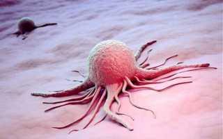 О чем говорят понижены эозинофилы у взрослого в анализе крови