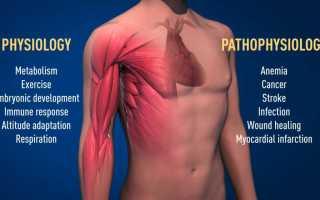 Сатурация кислорода в крови