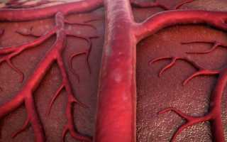 Четыре способа насыщения крови кислородом