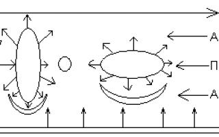 Как правильно приготовить prf-сгустки и плазму для prp / плазмолифтинга (+фото)