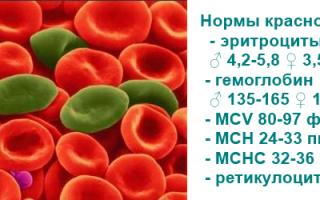 Хромопротеиды. классификация и отдельные представители. гемоглобин: структура, свойства, виды, возрастные изменения качественного и количественного состава крови. гемоглобин а-ic и его клиническое зна