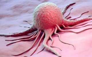 Содержание и функции некоторых белков плазмы крови