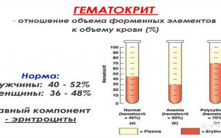 Состав и физико-химические свойства плазмы крови