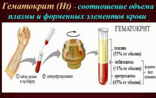 Повышенный гемоглобин эритроциты и гематокрит в крови у ребенка