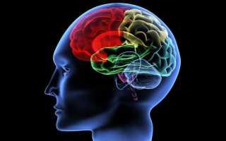 Польза и значение лейцина, самой главной аминокислоты для человеческого организма