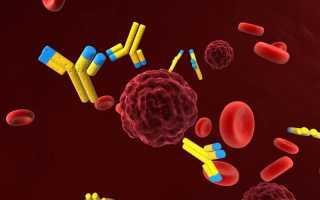 Анализ крови на ИППП: зачем нужен и что показывает
