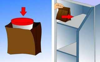 Анализ кала: сколько можно хранить кал в холодильнике и как его правильно собрать