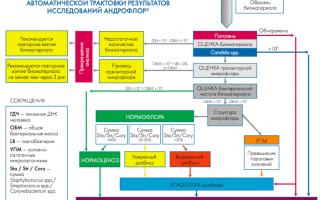 Анализ андрофлор скрин: описание, преимущества, расшифровка