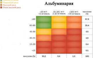 Расшифровка общего анализа мочи malb