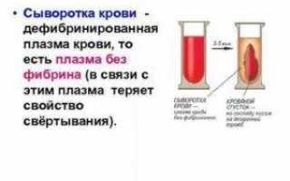 Состав плазмы крови: какие фракции содержатся в жидкости