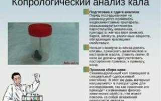 Анализ кала на паразитов: как правильно подготовиться и сдавать, расшифровка результата