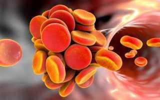 Содержание гемоглобина в крови у женщин: норма и причины отклонений