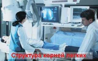 Что показывает рентген легких и бронхов