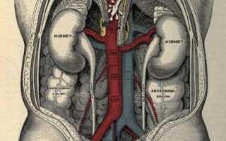 Кт аорты и артерий нижних конечностей в москве