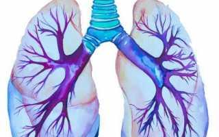Все, что нужно знать о мультиспиральной компьютерной томографии органов брюшной полости